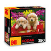 Kodak: Adorable Puppies - 350pc Jigsaw Puzzle by Lafayette Puzzle Factory