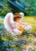 An Angel's Care - 500pc Jigsaw Puzzle by Castorland