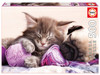 Dream Companions - 500pc Jigsaw Puzzle by Educa