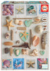 Seashells Collage - 1000pc Jigsaw Puzzle by Educa
