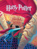 Chamber of Secrets - 1000pc Jigsaw Puzzle by New York Puzzle Company