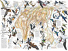 Eastern Bird Migration - 1000pc Jigsaw Puzzle by New York Puzzle Company