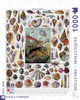 Mollusks - 1000pc Jigsaw Puzzle by New York Puzzle Company