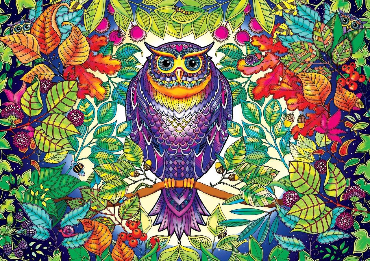 - SECRET GARDEN: Johanna Basford FOREST OWL - 500pc Coloring Book