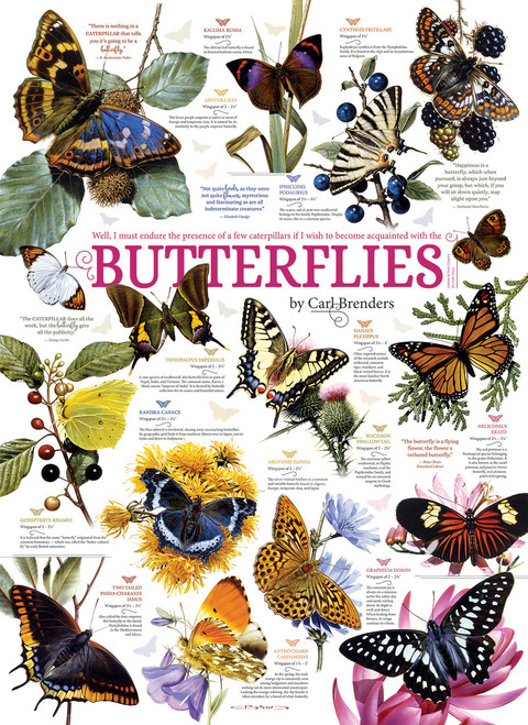 Butterfly Collection - 1000pc Jigsaw Puzzle by Cobble Hill