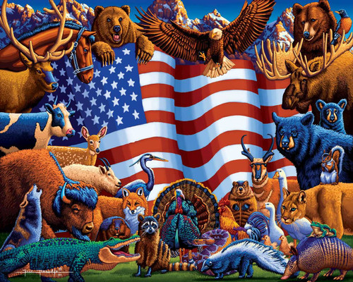 Animals of America - 500pc Jigsaw Puzzle by Dowdle