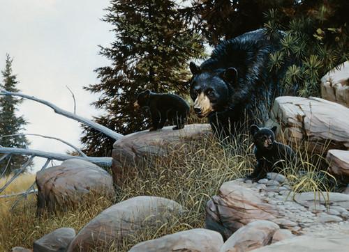 Cobble Hill Jigsaw Puzzles - Black Bear Family