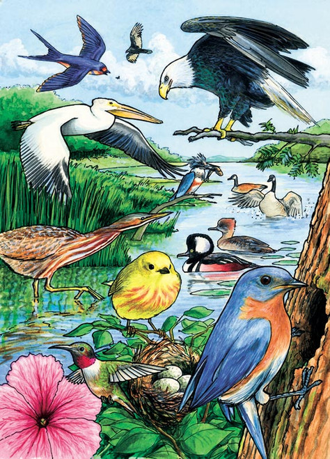 Cobble Hill Children's Puzzles - North American Birds