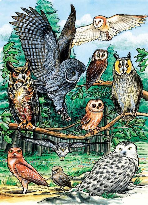 Cobble Hill Children's Puzzles - North American Owls