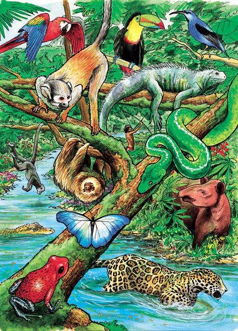 Cobble Hill Children's Puzzles - Life in a Tropical Rainforest