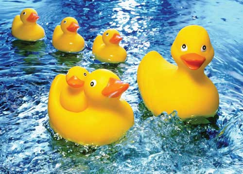 Rubber Duckies - 60pc Jigsaw Puzzle by Springbok (discon)