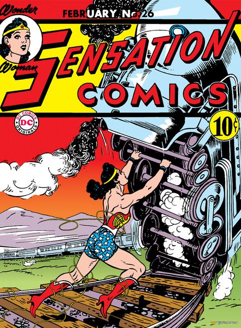 DC: Wonder Woman - 500pc Jigsaw Puzzle by Aquarius