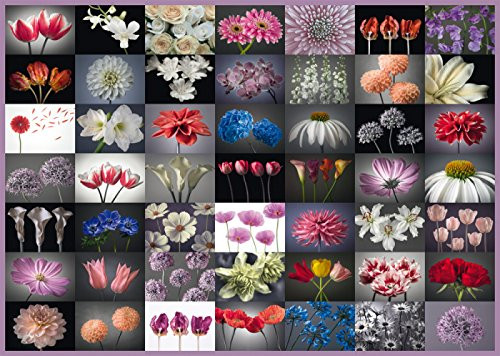 Floral Greeting - 2000pc Jigsaw Puzzle by Schmidt