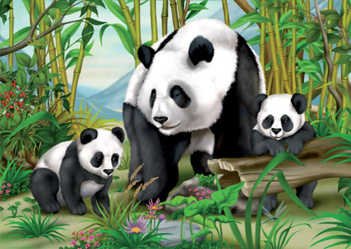 Panda Family - 24pc Jigsaw Puzzle by D-Toys