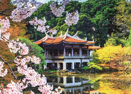 Blossom in Japan - 1000pc Jigsaw Puzzle By Jumbo