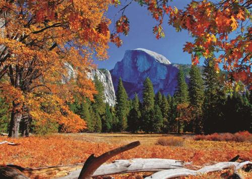 Yosemite National Park, USA - 500pc Jigsaw Puzzle By Jumbo
