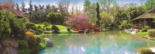 Colourful Garden - 1000pc Panoramic Jigsaw Puzzle By Jumbo