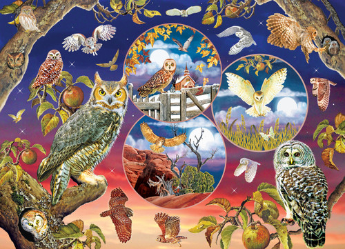 Owl Magic - 1000pc Jigsaw Puzzle By Cobble Hill