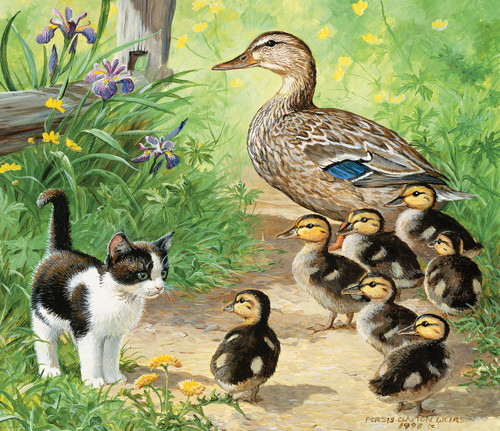Ducks and Friend - 25pc Jigsaw Puzzle By Sunsout