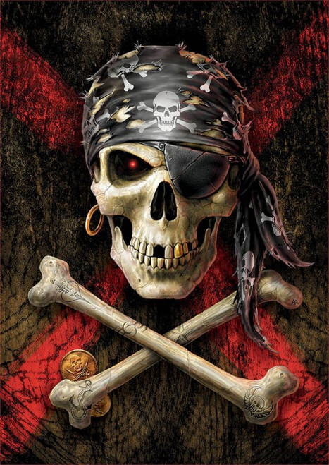 Pirate Skull - 500pc Jigsaw Puzzle by Educa