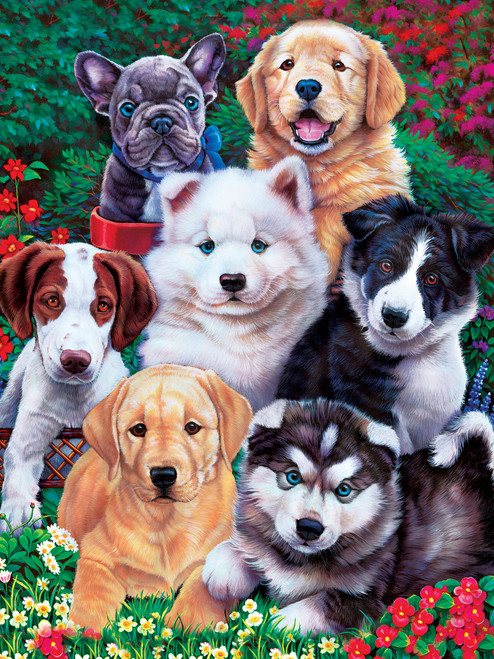Playful Paws: Fluffy Fuzzballs - 300pc EZ Grip Jigsaw Puzzle By Masterpieces
