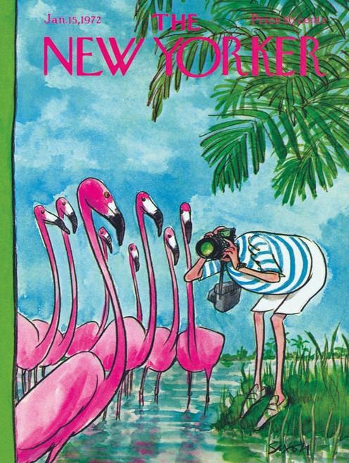 Flamingo Photographer - 500pc Jigsaw Puzzle by New York Puzzle Company