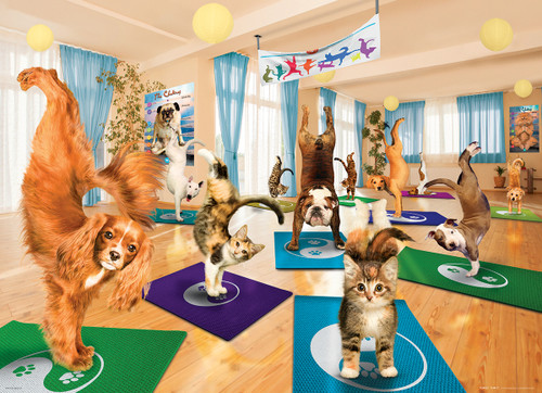 Yoga Studio - 300pc Jigsaw Puzzle by Eurographics