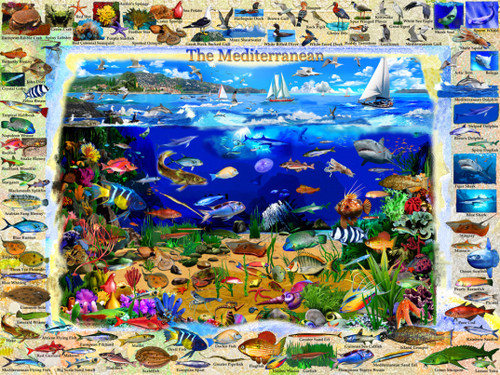 The Mediterranean - 550pc Jigsaw Puzzle by Vermont Christmas Company