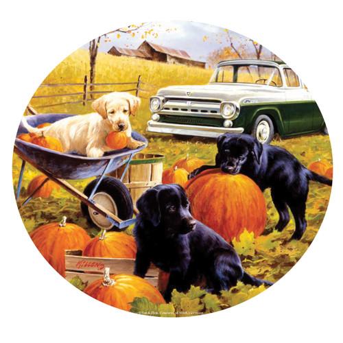 Pumpkin Patch - 500pc Jigsaw Puzzle By Sunsout