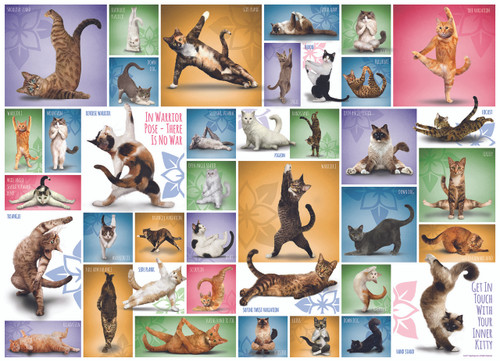 Yoga Cats - 1000pc Jigsaw Puzzle by Eurographics