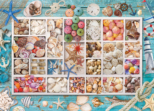 Seashell Collection - 1000pc Jigsaw Puzzle by Eurographics