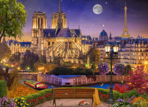 Notre Dame Night - 1000pc Jigsaw Puzzle by Vermont Christmas Company