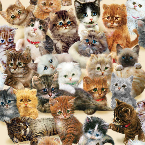 Kittens for the Taking - 500pc Jigsaw Puzzle By Sunsout