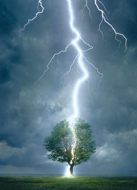 Eurographics Jigsaw Puzzles - Lightning Striking Tree