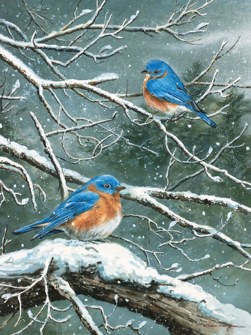 Jack & Frost / Mangum - 550pc Jigsaw Puzzle by Heritage Puzzle