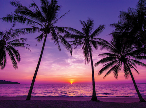 Tropical Sunset - 1000pc Jigsaw Puzzle By Serious Puzzles