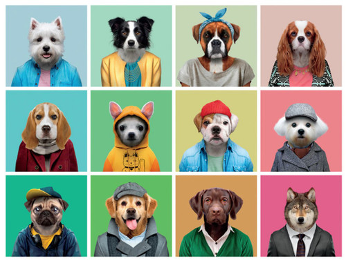 Dog Days: Canine Collage - 750pc Jigsaw Puzzle by Buffalo Games