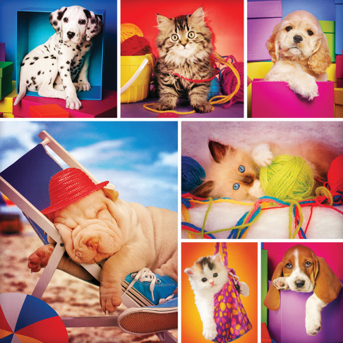 Instapaws: #SnuggleSelfies - 500pc Square Jigsaw Puzzle by Masterpieces