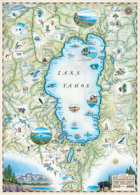 Xplorer: Lake Tahoe - 1000pc Jigsaw Puzzle by Masterpieces