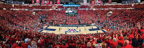 Panoramic Jigsaw Puzzles - University of Arizona