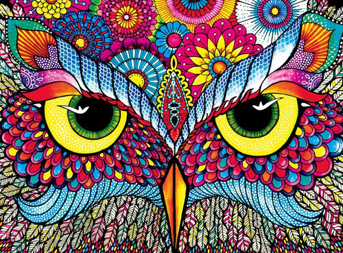 Owl Eyes - 1000pc Jigsaw Puzzle by Buffalo Games