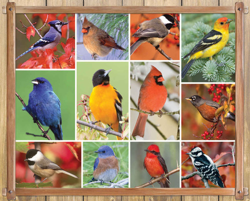 Songbirds - 100pc Jigsaw Puzzle By Springbok