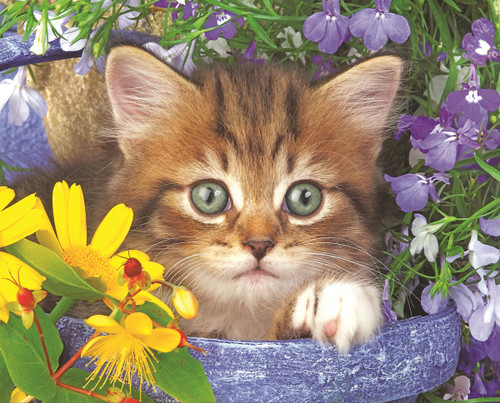 Garden Helper - 36pc Jigsaw Puzzle By Springbok