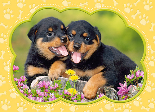 Little Rottweilers - 35pc Jigsaw Puzzle By Castorland (discon)