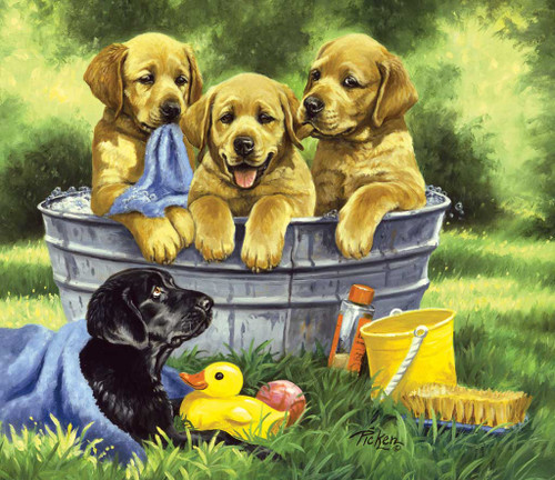 Jigsaw Puzzles - Squeaky Clean