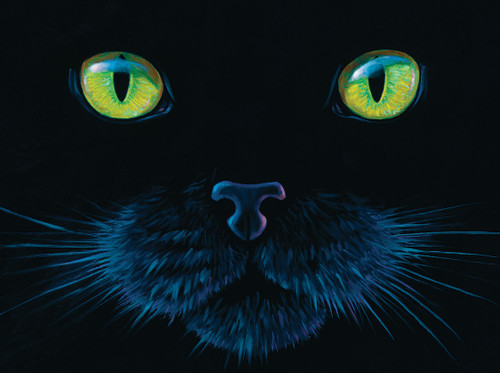 Black Cat - 1000pc Jigsaw Puzzle by SunsOut
