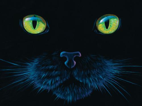 Black Cat - 1000pc Jigsaw Puzzle by SunsOut