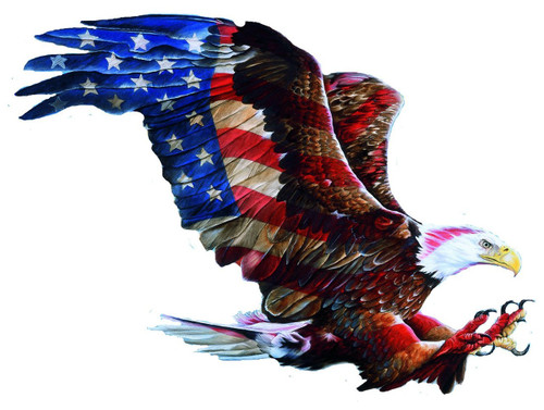 American Glory - 900pc Shaped Jigsaw Puzzle by Sunsout