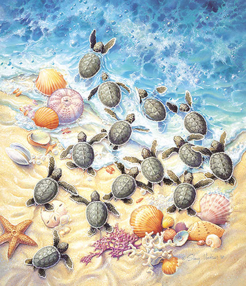 Jigsaw Puzzles - Green Turtle Hatchlings