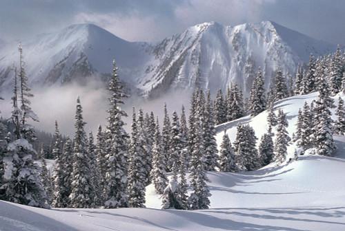 Tomax Jigsaw Puzzles - Snowy Winter